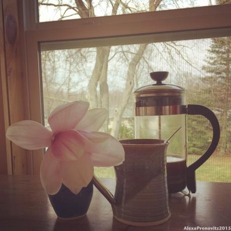 coffee break on the sun porch